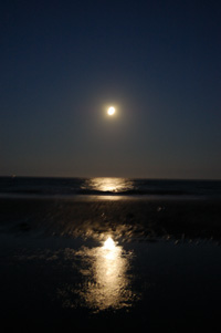 Full Moon Tide